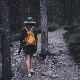 Um passeio no bosque e as cores do Outono