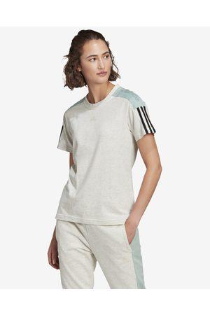 adidas Senhora T-shirts & Manga Curta - Essentials Logo T-shirt Green Beige