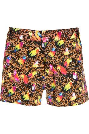 AMIR SLAMA Print Papagaios shorts