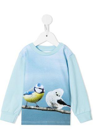 Molo Botanical-print cotton sweatshirt