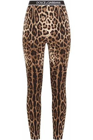 Dolce & Gabbana Leopard-print logo-waistband leggings