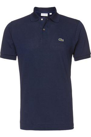 Lacoste Homem Formal - Camisa
